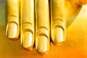 bigstock-closeup-of-the-fingers-of-budd-48810572